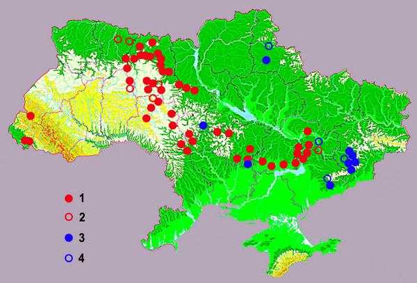Огнеупорные глины украины