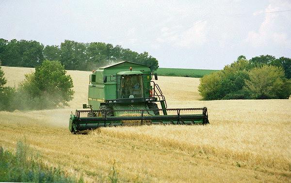 Ход уборки на 16 сентября: намолочено 87,3 млн.т зерна