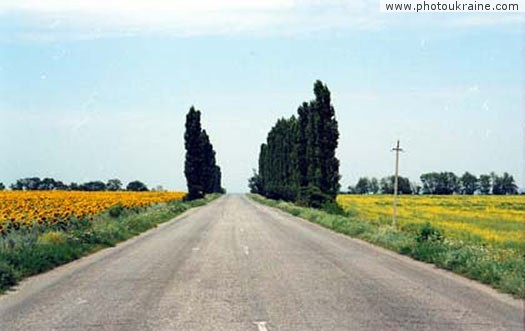 Village Volosske. Picturesque road Dnipropetrovsk Region Ukraine photos