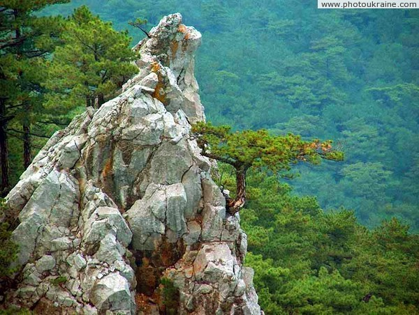 Yalta Reserve. Picturesque cliff Autonomous Republic of Crimea Ukraine photos