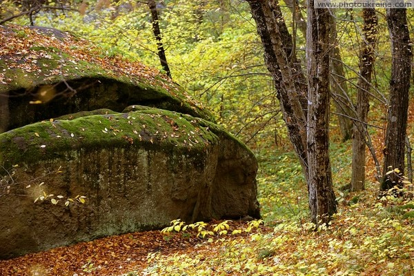 Busha. Sandstone boulders sometimes resemble cap of mushrooms Vinnytsia Region Ukraine photos