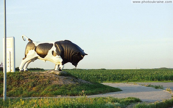 Dnipropetrovsk. Bull-monument in suburb Dnipropetrovsk Region Ukraine photos