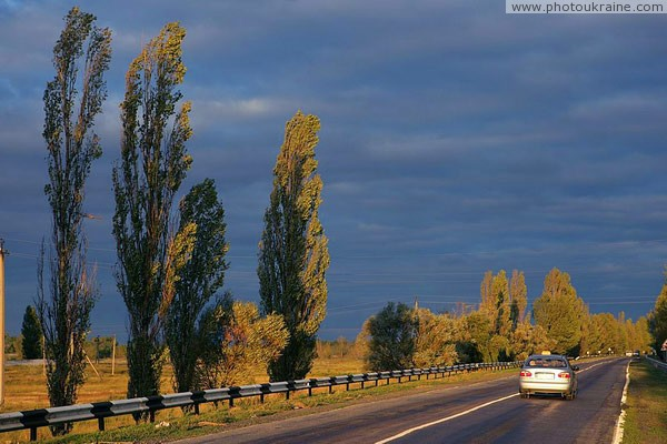 Road at sunset Dnipropetrovsk Region Ukraine photos