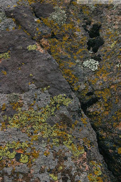 Kamiani Mohyly Reserve. Granite and lichens Donetsk Region Ukraine photos