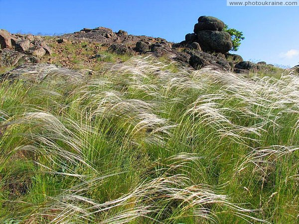 Feather-grass surrounding granites Donetsk Region Ukraine photos