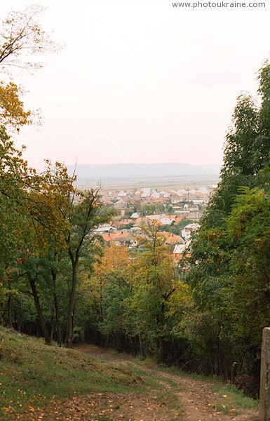 Korolevo. View of village from road to castle Zakarpattia Region Ukraine photos