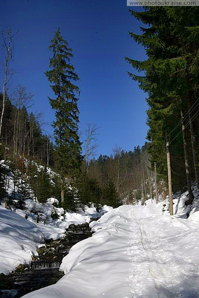 Reserve Synevyr. Winter Journey in Gorgany Zakarpattia Region Ukraine photos