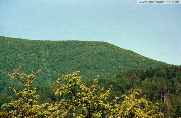 Syniak. Ridge Syniak of Volcanic Carpathians Zakarpattia Region Ukraine photos