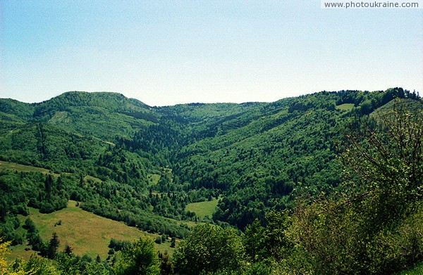 Uzhanskyi Reserve. Carpathian slopes Zakarpattia Region Ukraine photos