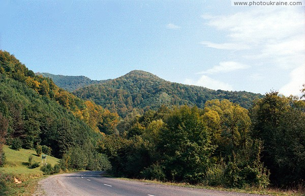 Lug. In Kuziysky array Carpathian reserve Zakarpattia Region Ukraine photos