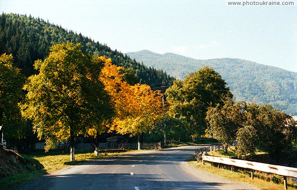 Kostylivka. Road and early autumn Zakarpattia Region Ukraine photos