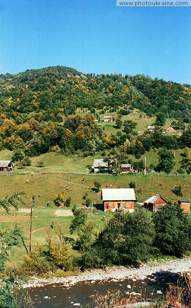 Kvasy. Tisa in upper reaches Zakarpattia Region Ukraine photos