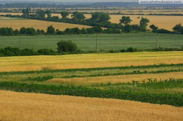 Agricultural holdings Zakarpattia Region Ukraine photos