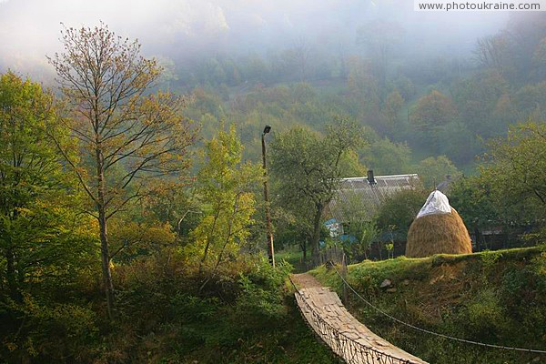 Country Road of Life Zakarpattia Region Ukraine photos