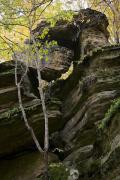 Busha. Funny rock in Gaydamak Yar, Vinnytsia Region, Geological sightseeing
