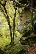 Busha. Exposure arkoz sandstones in Gaydamak Yar, Vinnytsia Region, Geological sightseeing