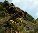 Kryvyi Rih. Iron and flowers, Dnipropetrovsk Region, Geological sightseeing