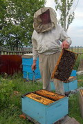 Kamiani Mohyly Reserve. Apiarist, Donetsk Region, Peoples