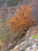 Zhytomyr. Autumn fire, Zhytomyr Region, Geological sightseeing