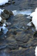 Reserve Synevyr. Mountain stream winter, Zakarpattia Region, National Natural Parks