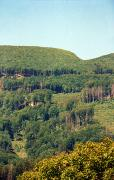 Syniak. On hillside Obavsky Stone, Zakarpattia Region, Geological sightseeing