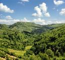 Uzhanskyi Reserve. In right-bank part of park, Zakarpattia Region, National Natural Parks