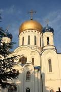 Uzhgorod. Domes of Orthodox Cathedral, Zakarpattia Region, Churches