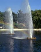 Zaporizhzhia. Fountains in Park Oak Forest, Zaporizhzhia Region, Cities