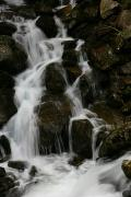 Carpathian NNP. Cascade waterfall on a mountain stream, Ivano-Frankivsk Region, National Natural Parks